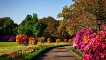 Elk seizoen een mooie tuin